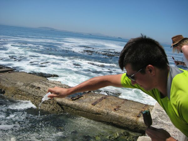 So he could introduce it to Cape Town's side of the sea!